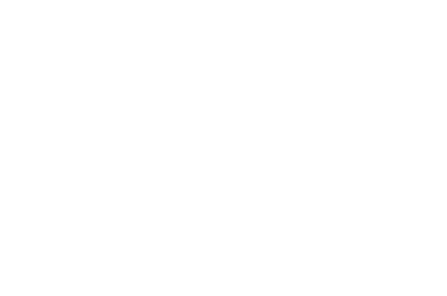 Function-Works Inc.